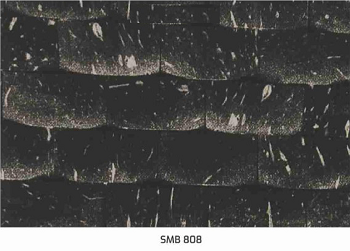 SMB808