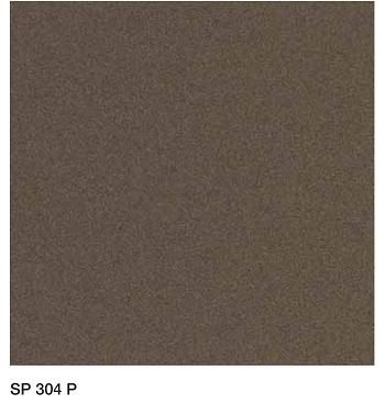 SP304P